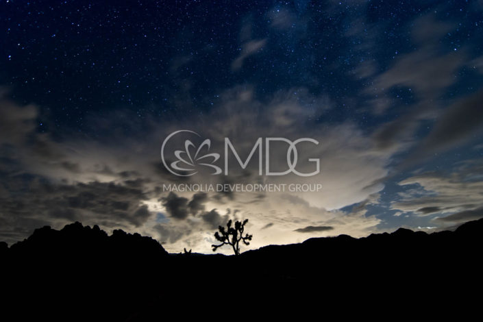 Professional photography | MDG
